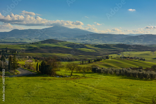 Papiers peints Bleu jean Spring landscape in the hills of Tuscany Italy, land of Brunello wine
