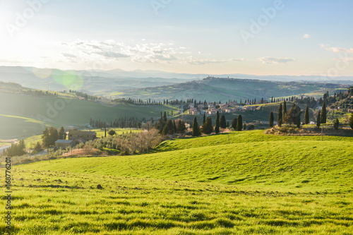 Foto op Plexiglas Blauwe hemel Spring landscape in the hills of Tuscany Italy, land of Brunello wine
