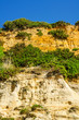 Seaside sandstone hillside covered with grass and bushes, geology, the power of nature
