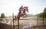 Young female jockey on horse leaping over hurdle - 168867843