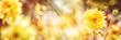 Quadro Yellow Dahlia, Bee, Summer Background