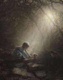 Little girl finding flowers in the forest - 168886618