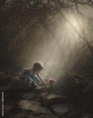 Little girl finding flowers in the forest Poster