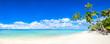 Strand Panorama mit Meer und Palmen