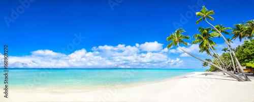 Fotobehang Tropical strand Strand Panorama mit Meer und Palmen