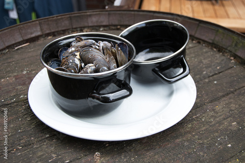 Muschelzeit
