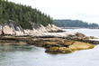 Scenic view of part of Vinalhaven Island Maine
