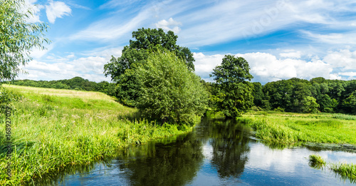 calm river with meadows and forest around - landscape