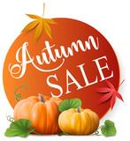 autumn sale offer button - 168928822