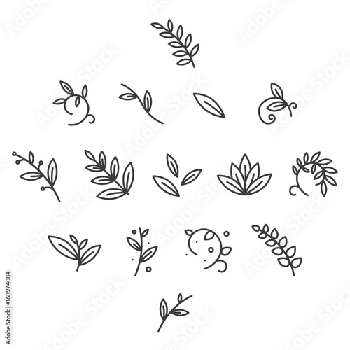 Green Floral Decorative Branch Leaves Plant Flat Line Stroke Icon Pictogram Symbol
