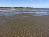 Wattenmeer vor Cuxhaven bei Ebbe