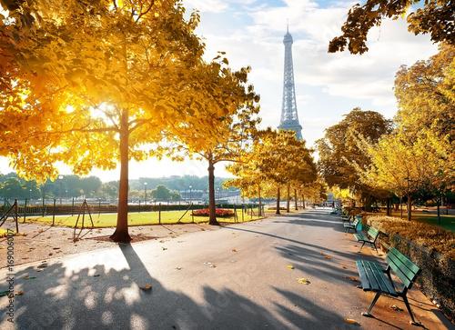 Fototapety, obrazy : Sunny morning in Paris in autumn