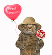 The cat in a straw hat holds a red balloon and a lollipop. White background.