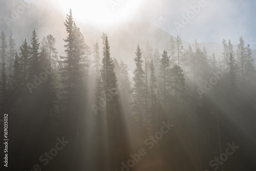 Fotobehang Grijs Banff Landscape