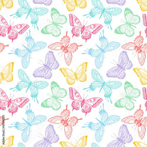 Fototapeta seamless sketch multicolored butterflies