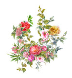 Watercolor painting of flower, rose on white background - 169083883