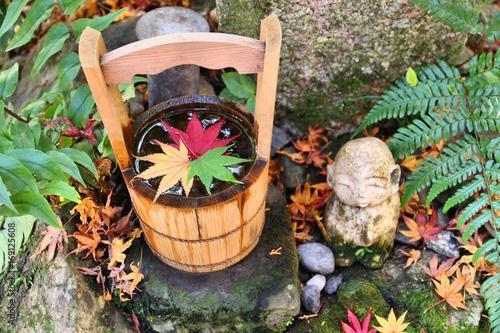 Deurstickers Kyoto Kyoto autumn