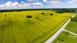Aerial view of beautiful yellow meadows in open countryside - 169173867