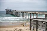 Ellen Browning Scripps Memorial Pier, La Jolla Beach - San Diego - CA - 169175825