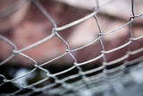 Metal mesh on the fence as a background - 169184269