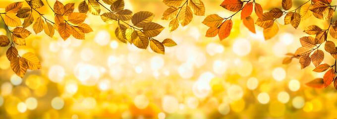 Herbstblätter als Rahmen vor buntem Bokeh Hintergrund