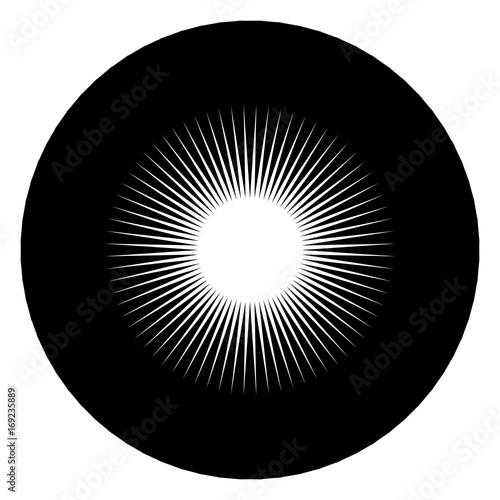 Circular geometric motif. Abstract grayscale op-art element - 169235889