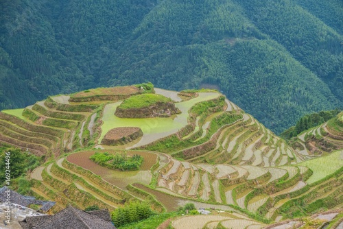 Aluminium Groen blauw Rice Terraces in the South of China