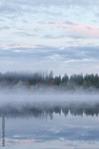 Calm foggy lake scape summer night Poster