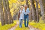 Älteres Paar macht Spaziergang im Wald - 169300091