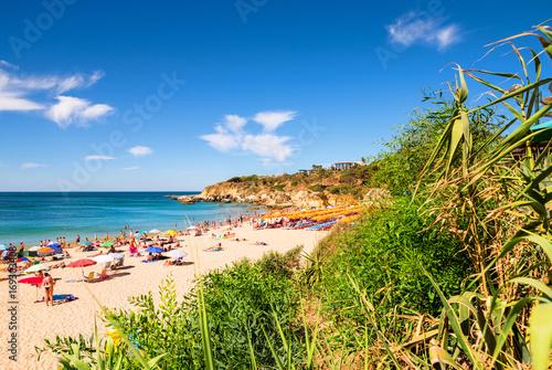 plage et son lagon ensoleillé Poster