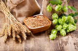 green hops, wheat ears and grains - 169314039