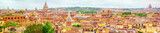 View of the city of Rome from above, from the hill of Terrazza del Pincio. Italy. - 169361664