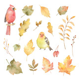 Watercolor vector autumn set of leaves and birds isolated on white background. - 169373296