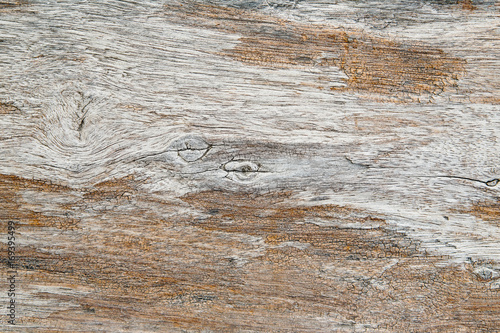 old grunge wood texture, nature abstract background