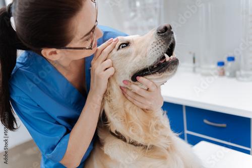Scared dog keeping eyes wide opened