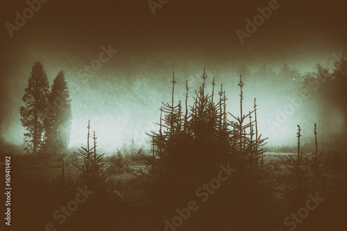 dark and scary landscape Poster
