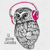 The image of an owl wearing headphones. Vector illustration. - 169419033