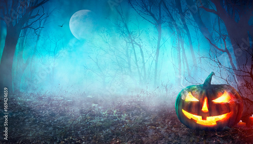 Halloween Spooky Forest © mythja