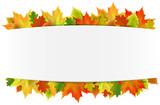 Herbst Banner mit Herbst Blätter Laub - 169430096