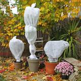 Voile d'hivernage sur plantes en pots - 169441837