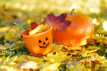 Big orange pumpkin and kid's Halloween bucket laying on the ground covered with autumn leaves