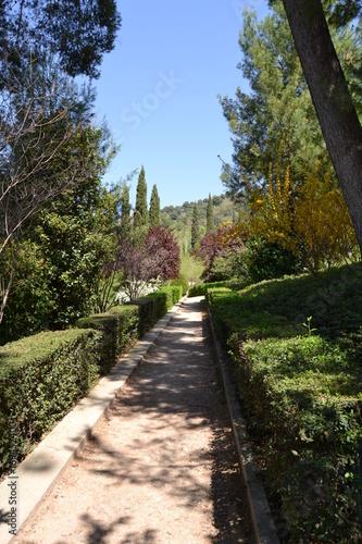Papiers peints Route dans la forêt La Alhambra, Granada