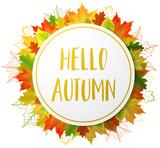 autumn fall leaves circle - 169469456
