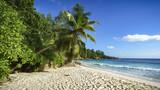 Paradise Beach On The Seychelles 3