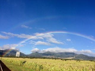 Rainbow in Hawaii