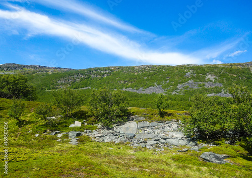 Foto op Canvas Klaprozen Terrain in Northen Norway during summer