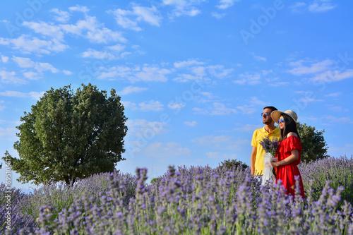 Lavender scented village Poster