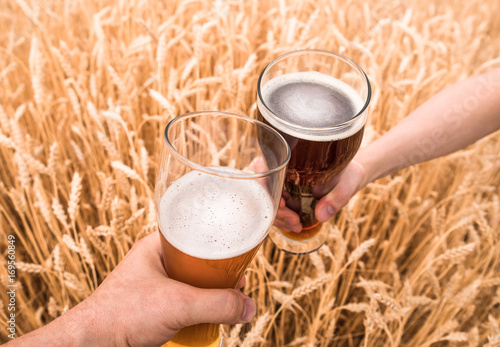 A glass of beer in a hand in a wheat field Poster