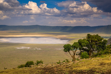 Landscape in The Ngorongoro Crater - Tanzania