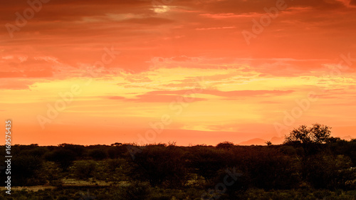 Fotobehang Koraal Beautiful sunset at the Erindi Private Game Reserve, Namibia